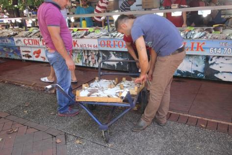 Local fish market.